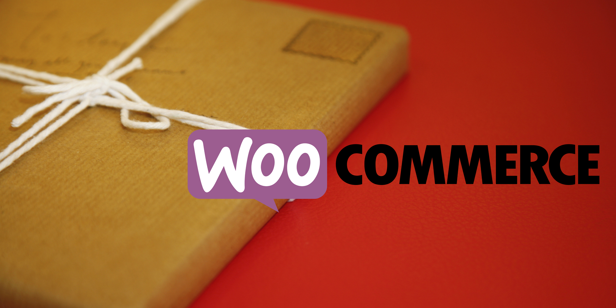 Adding Optional Extras To Woocommerce Delivery   by @paulbunkham